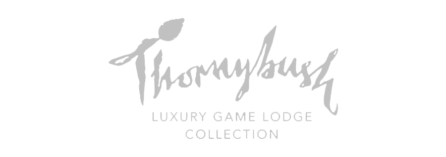 Thornybush hospitality software developer